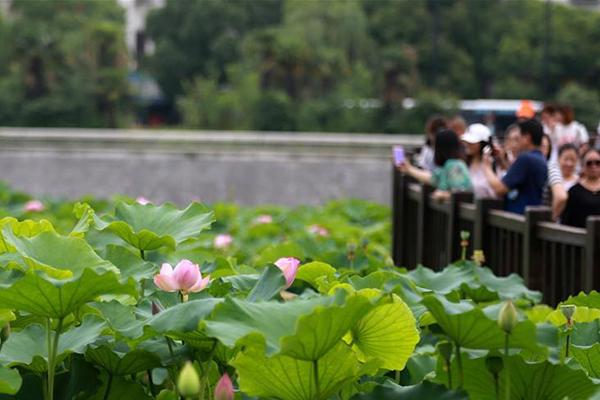الصين تشهد 48.8 مليون رحلة سياحية محلية خلال عطلة عيد قوارب التنين