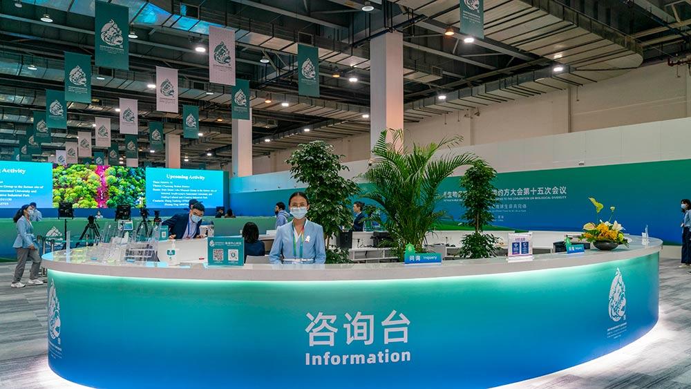 افتتاح المركز الإعلامي لمؤتمر الأطراف في اتفاقية الأمم المتحدة للتنوع البيولوجي